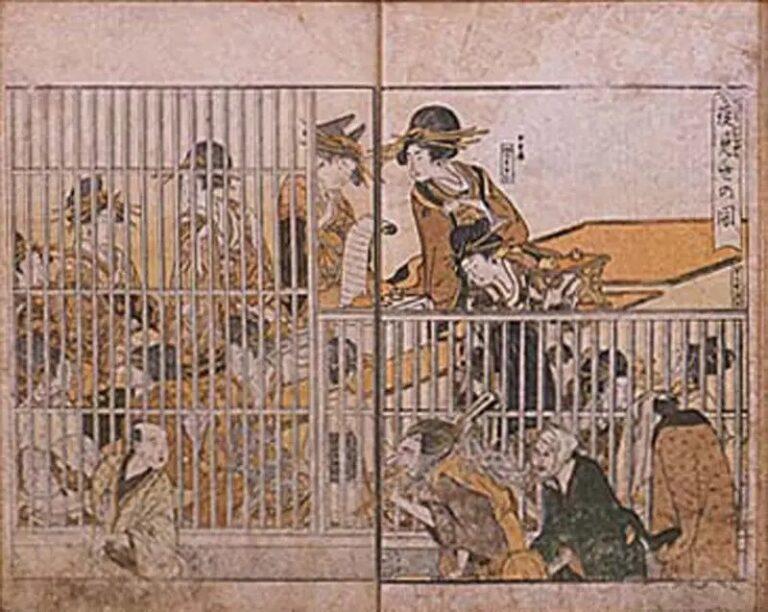 Ойран (Японские проститутки) 6 вещи которые запрещено было делать.